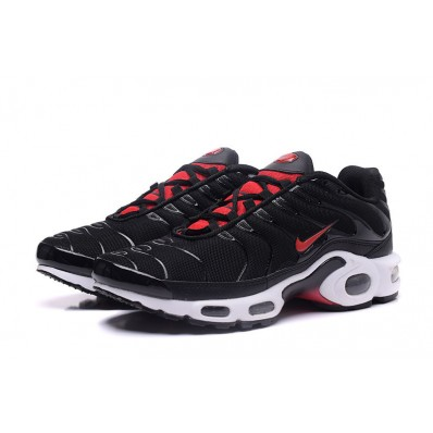 nike air max requin tn