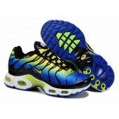 nike air tn la requin